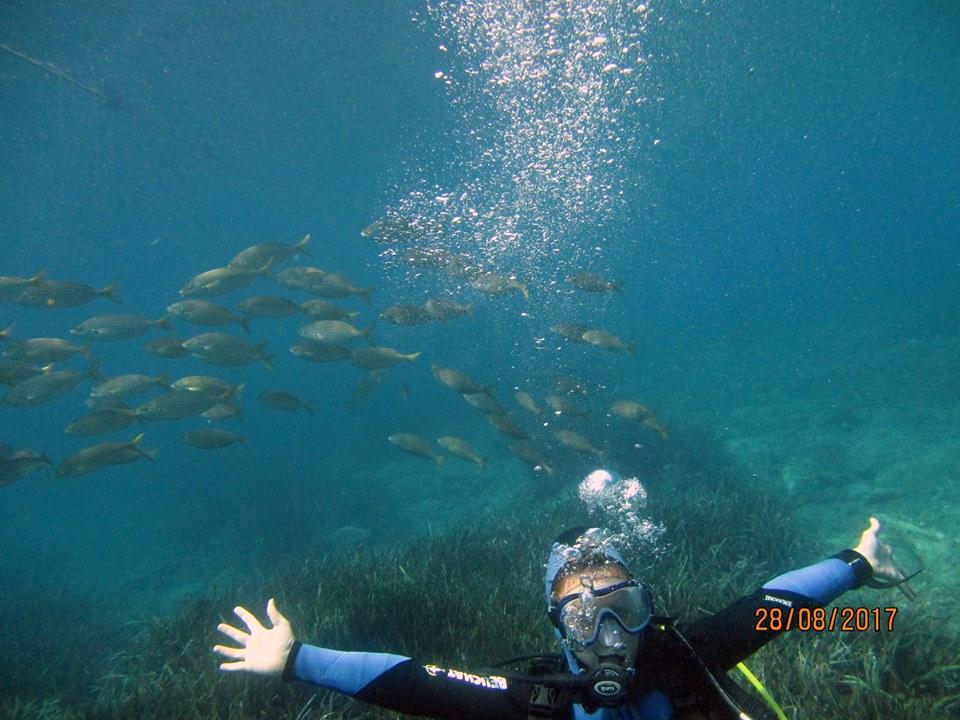 ban de poissons
